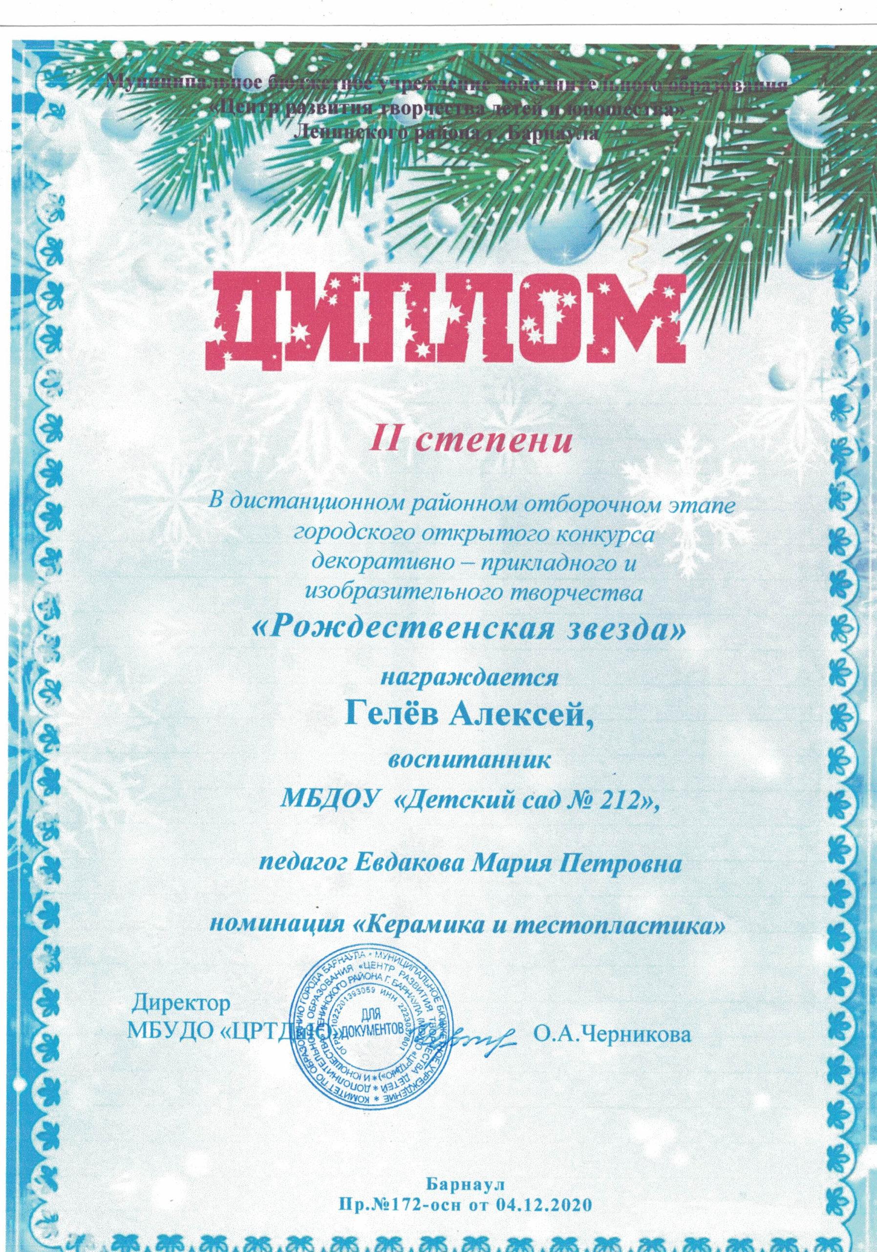 Диплом Рождественская звезда 214122020