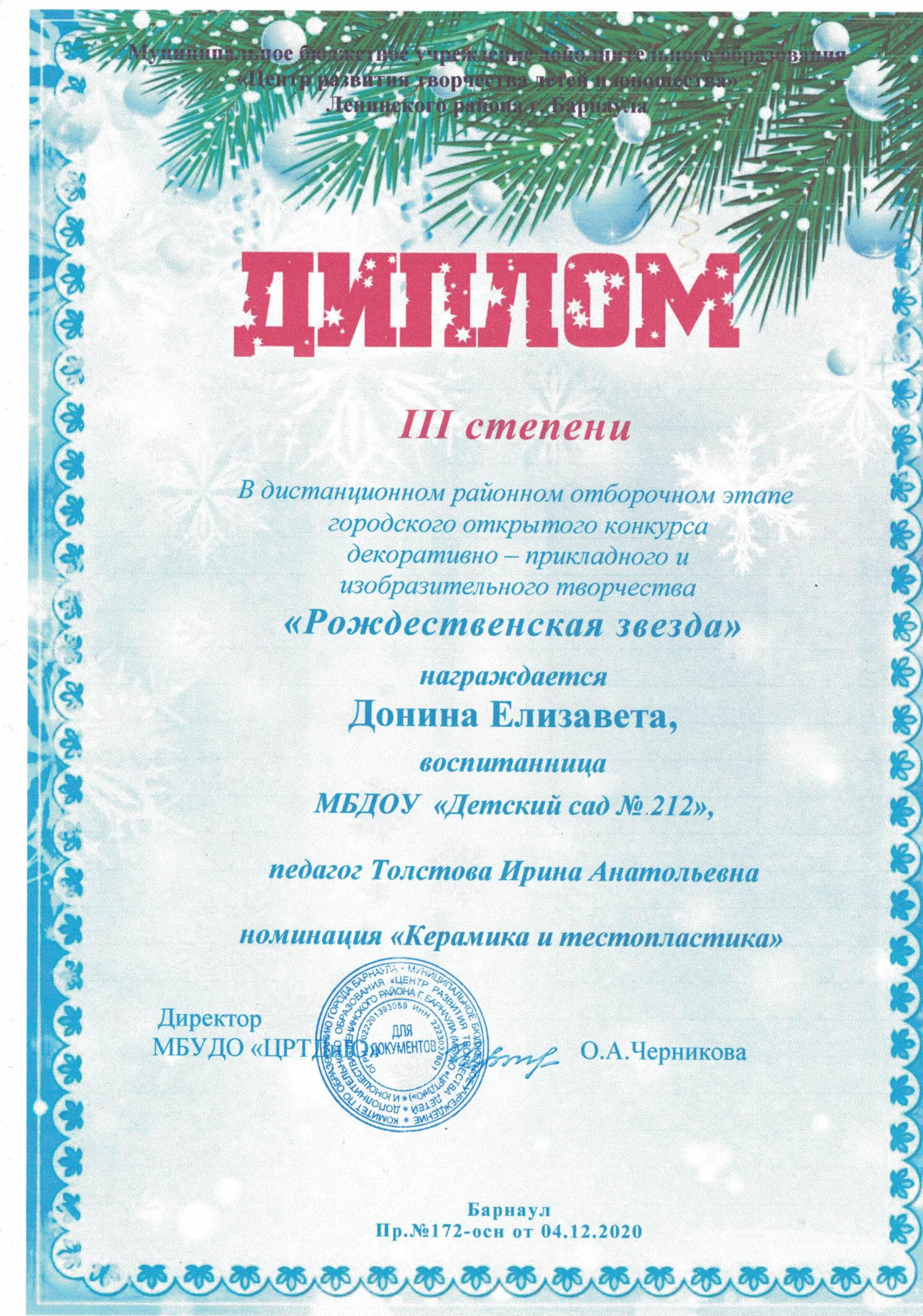 Диплом Рождественская звезда 314122020
